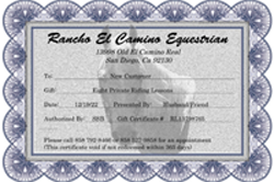 Horse riding lessons san diego for adults ranchoelcamino gift certificate yadclub Choice Image